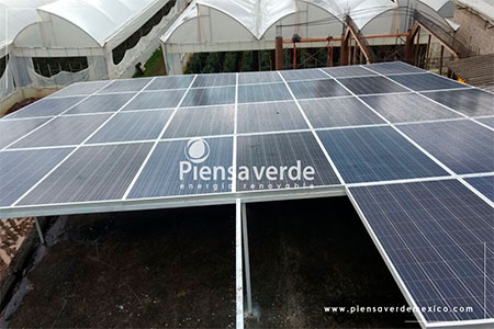 Paneles solares invernadero